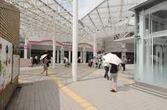 各線・新百合ヶ丘駅の様子。(2013-08-22,共用部,ENVIRONMENT,4F)