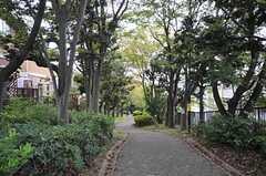 駅近くの緑道の様子。(2013-10-08,共用部,ENVIRONMENT,1F)