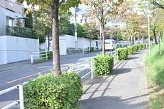 周辺は街路樹も多く、緑がいっぱい。(2013-10-08,共用部,ENVIRONMENT,1F)