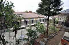 裏庭の様子。(2009-02-11,共用部,LIVINGROOM,1F)