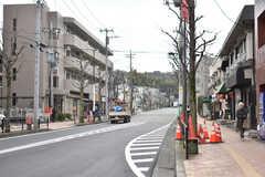 シェアハウス周辺の様子2。通りを真っ直ぐ進むと、生田緑地があります。(2019-03-01,共用部,ENVIRONMENT,1F)