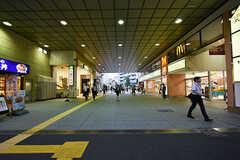 JR南武線・武蔵中原駅の様子。(2016-09-28,共用部,ENVIRONMENT,1F)