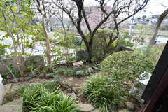 庭の様子。(101号室)(2019-03-14,専有部,ROOM,1F)