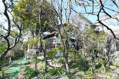 庭の様子4。(2019-03-14,共用部,OTHER,1F)