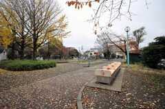 シェアハウス前の公園。(2009-11-30,共用部,ENVIRONMENT,1F)