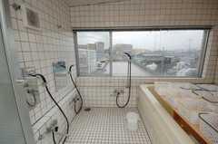 お風呂の様子。(2008-10-08,共用部,BATH,4F)