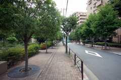 京浜急行大師線小島新田駅からシェアハウスへ向かう道の様子。(2008-10-08,共用部,ENVIRONMENT,1F)