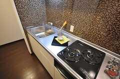 キッチンは専有部内にあります。(101号室)(2010-03-09,専有部,ROOM,1F)
