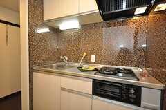 キッチンの様子。(101号室)(2010-03-09,専有部,ROOM,1F)