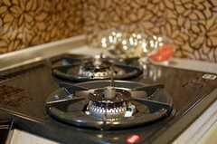 2口ガスコンロの様子。(101号室)(2010-03-09,専有部,ROOM,1F)