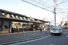 小田急線・読売ランド前駅の様子。(2011-12-19,共用部,ENVIRONMENT,1F)