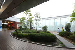 各線・元住吉駅構内の様子。(2013-07-26,共用部,ENVIRONMENT,1F)