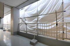 ベランダの様子。(505号室)(2011-11-01,専有部,ROOM,5F)