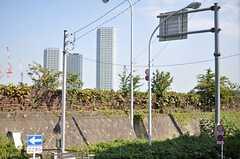 窓から見える景色。多摩川の土手が見えます。(201号室)(2013-10-28,専有部,ROOM,2F)
