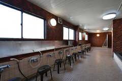 大浴場の様子2。(2017-03-30,共用部,BATH,1F)