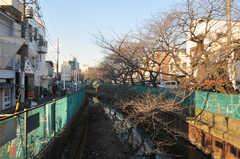 東急東横線・元住吉駅からシェアハウスへ向かう道の様子2。春には桜が咲くそう。(2011-01-19,共用部,ENVIRONMENT,1F)