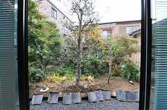 庭を借景できる隣の敷地はオーナーさんのご実家。お母さんが掃除を担当されるのだそう。(2012-11-13,共用部,OTHER,1F)