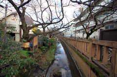 シェアハウスの近くには川が流れています。(2008-12-10,共用部,ENVIRONMENT,1F)