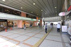 JR南武線・武蔵中原駅の様子2。(2012-03-22,共用部,ENVIRONMENT,1F)