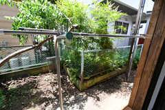 庭には洗濯物が干せます。102号室との共用です。(101号室)(2021-06-01,専有部,ROOM,1F)
