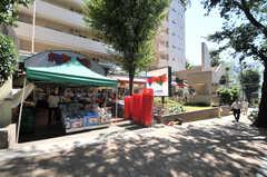 東急田園都市線・宮崎台駅近くにあるスーパーの様子。(2014-08-06,共用部,ENVIRONMENT,1F)