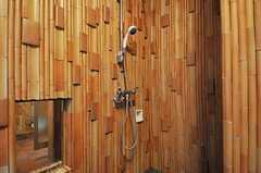 洗濯機脇にシャワーがあります。(2013-02-20,共用部,BATH,1F)