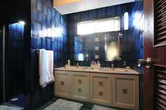 洗面台の様子。左手にトイレとシャワールームがあります。(2013-02-20,共用部,OTHER,2F)