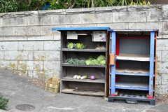 駅近くには野菜の無人販売所があります。(2020-01-31,共用部,ENVIRONMENT,1F)