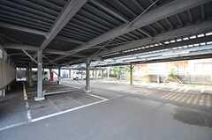 駐輪場の様子。契約は別会社と締結します。(2015-02-25,共用部,GARAGE,1F)
