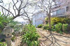 窓からは庭が眺められます。(106号室)(2015-03-31,専有部,ROOM,1F)