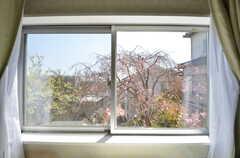 窓からは庭の枝垂桜が見られます。(205号室)(2015-03-31,専有部,ROOM,2F)
