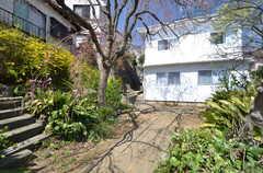 庭の様子2。シェアハウスの側面は真っ白。(2015-03-31,共用部,OTHER,1F)