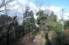 緑を感じるベランダからの景色。(212号室)(2011-02-18,専有部,ROOM,2F)