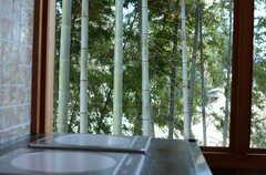 キッチン脇の窓からは、竹林を眺めることができます。(2011-10-25,共用部,KITCHEN,3F)