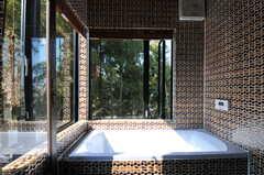 2面に窓があり、竹林に囲まれているよう。窓にはウッドブラインドが付いているので隠すことも出来ます。(2011-10-25,共用部,BATH,4F)