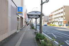横浜市営地下鉄・三ツ沢下町駅の様子。(2011-11-28,共用部,ENVIRONMENT,1F)