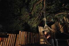 夜の中庭3。ハンモックチェアでぶらりぶらり。(2011-11-26,共用部,PARTY,3F)