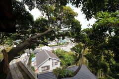 ツリーハウスから見た景色。(2012-05-16,共用部,OTHER,1F)