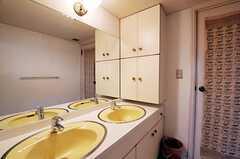 脱衣室に設置された洗面台の様子2。(2011-01-25,共用部,BATH,1F)