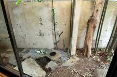坪庭の様子。(101号室)(2011-01-25,専有部,ROOM,1F)