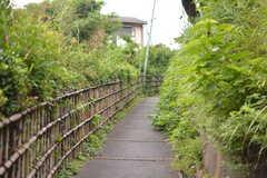 駅からシェアハウスへ向かうの道の様子。緑がたくさんの小道を上がっていきます。(2020-07-21,共用部,ENVIRONMENT,1F)