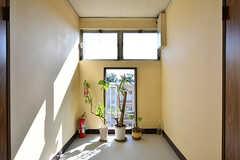 廊下の突き当たりには、緑が飾られています。(2016-10-20,共用部,OTHER,2F)