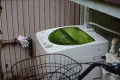 洗濯機の様子。(2015-02-18,共用部,LAUNDRY,1F)
