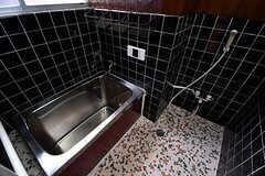 バスルームの様子。(2017-01-10,共用部,BATH,1F)