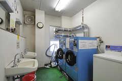 コイン式洗濯機・乾燥機の様子。(2014-04-01,共用部,LAUNDRY,1F)