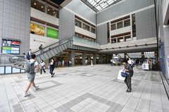 各線・日吉駅の様子。(2019-08-16,共用部,ENVIRONMENT,1F)