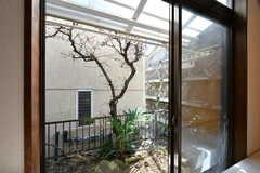 掃出し窓からは庭に出られます。洗濯物も干すことができます。(101号室)(2019-03-15,専有部,ROOM,1F)