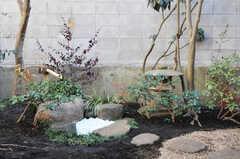 庭の様子。南天なども植えられています。(2013-02-25,専有部,ROOM,1F)
