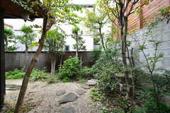 室内から見た庭の様子。(103号室)(2017-10-31,専有部,ROOM,1F)