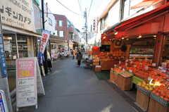 妙蓮寺駅前商店街の様子。車の通れないような路地にもお店が並んでいます。(2013-02-25,共用部,ENVIRONMENT,1F)
